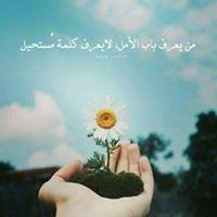 Nour MH